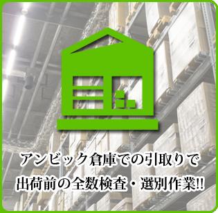 アンビック倉庫での引取りで 出荷前の全数検査・選別作業!!